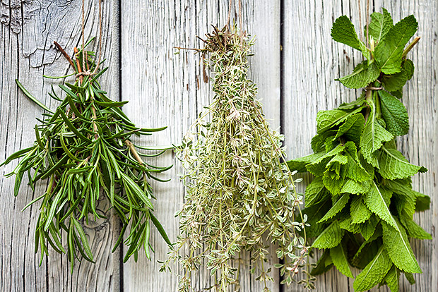 Herbs that Flavor Food and Improve Health