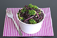 Broccoli & Black Rice Salad with Tahini-Honey Dressing
